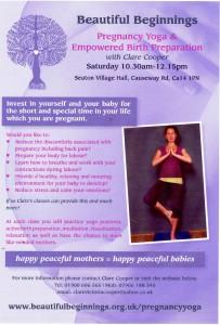 Seaton preg yoga poster