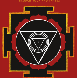 Book Review Yoni Shakti by Uma Dinsmore Tuli